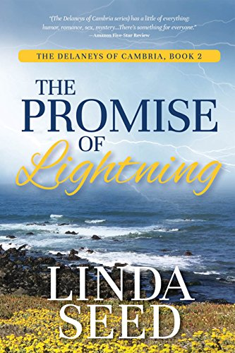 The Promise of Lightning (The Delaneys of Cambria Book 2)
