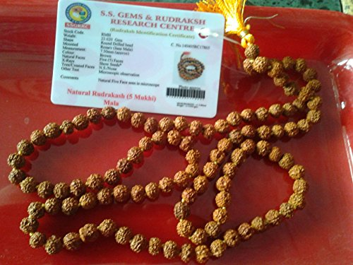 RARE 5 MUKHI RUDRAKSH MALA 108+1( WITH LAB. CERTIFICATE) BY S.S. GEMS
