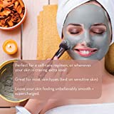 Pure Body Naturals Dead Sea Mud Mask for Face and