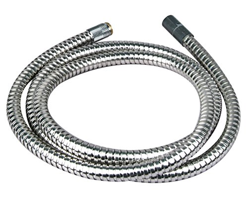Pull Out Spout Hose (BrassCraft Pull-Out Spout Replacement Hose, 5-Feet)