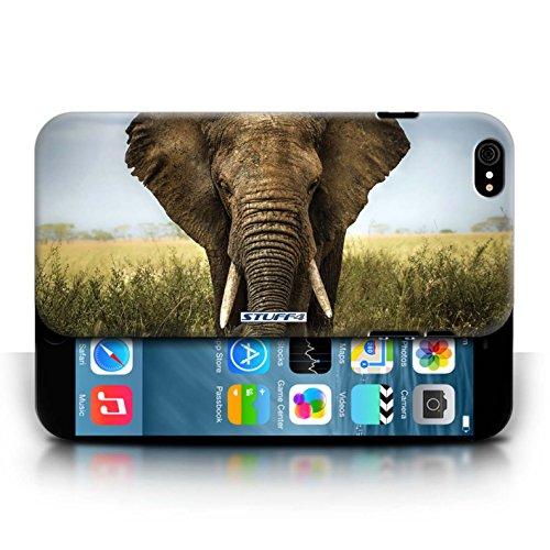 Kobalt Elefante stampato Custodia Cover per Apple iPhone 6/6S cellulari telefoni / Collezione Animali selvatici