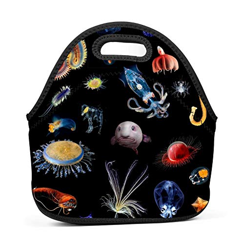 YYFESX Lunch Bags, Deep Sea Animals Lunch Boxes Neoprene Waterproof Lunch Tote Bag with Zipper for Kids Boys Girls Women