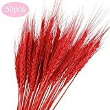 50pcs Natural Wheat Dried Bundle, Decorative Flower Branch Centerpieces, Colorful Kitchen Table Wedding Party DIY Decoration