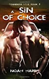 A Sin of Choice (Boundless Love) (Volume 2)