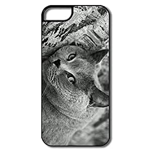 Durable British Shorthair Cat Case For IPhone 5/5s