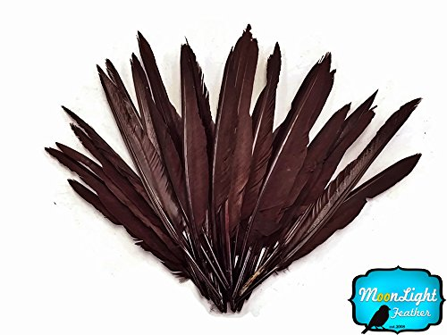 Duck Feathers, 0.5 Oz. Duck Primary Wing Pointer Feathers Brown ()