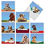 M3967 Reading Eye Dogs: 10 Assorted Blank All-Occasion Note Cards Featuring Book Smart Puppies Wearing Eyeglasses, w/White Envelopes.