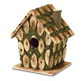 Eastwind Gifts 37921 Moss Bird House Review