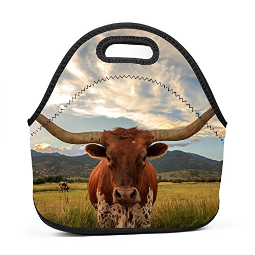 MAOXIANDER Texas Longhorn Reusable Lunch Tote Bag Travel School Lunch Boxes for Adults Kids ()