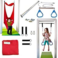 DreamGYM Indoor Swing Trapeze & Rings Combo Blue and Therapy Swing Red