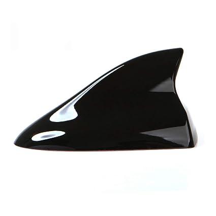 Amazon com: Ramble- Car Shark Fin Antenna, Auto Parts and