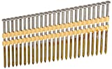 Hitachi 20110S Hitachi 20110S 3-in X .131 Bright Smooth Shank Plastic Collated Nails,
