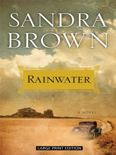 Read Online Rainwater (Thorndike Press Large Print Basic) pdf