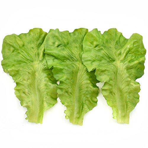 Best Artificial Vegetables
