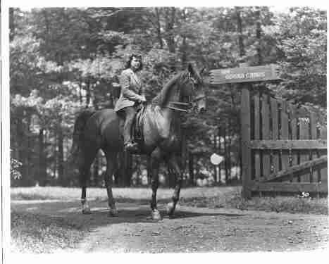Photo of Woman on Horse Pocono Pines Pa.