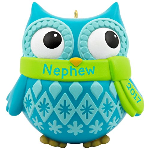 Hallmark Keepsake 2017 Cute Owl Nephew Dated Christmas - Nephew Ornament