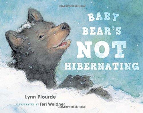 Download Baby Bear's Not Hibernating PDF