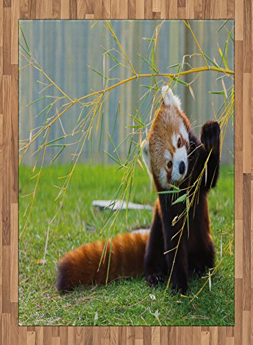 Africa Area Rug by Ambesonne, Cute Red Panda on the Field Playing with Bamboo Branches Native Himalaya Mountains, Flat Woven Accent Rug for Living Room Bedroom Dining Room, 5.2 x 7.5 FT, Brown Red by Ambesonne