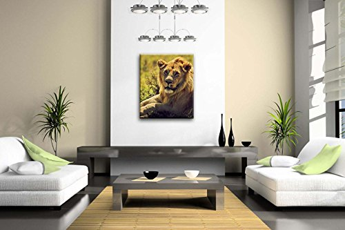 First Wall Art® - Young Adult Male Lion Lying On Savanna In Grass Safari In Serengeti Tanzania Africa Wall Art Painting The Picture Print On Canvas Animal Pictures For Home Decor Decoration Gift (Stretched By Wooden Frame,Ready To Hang)