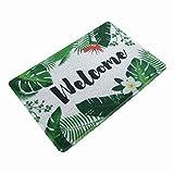 HiiARug Outdoor Welcome mat PVC Front Door Mat Back Door Rug 24-Inch x