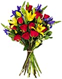 Benchmark Bouquets Joyful Wishes, No Vase, Fresh Cut Flowers Deal