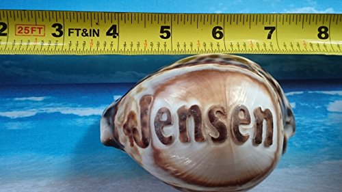 jensen-personalized-custom-engraved-shells-names-engraved-on-a-seashell-hand-made-all-natural-say-it