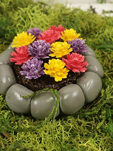 Fairy garden miniature flower bed. Purple, yellow, and red flowers in rock flower bed.