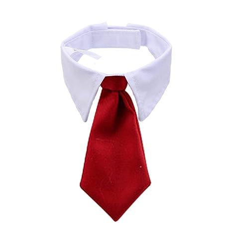 BERYLX - Collar con Pajarita para Mascota, Collar con Corbata ...