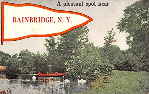 Bainbridge New York Swan Lake Pennant Flag Antique Postcard K670906