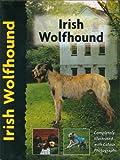 Irish Wolfhound (Pet love)