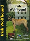 img - for Irish Wolfhound (Pet love) book / textbook / text book