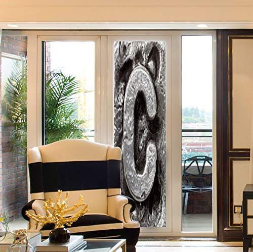 YOLIYANA Non Adhesive Window Film,Letter C,for Window Moving Glass Door,Fused Elements Aluminum Style Minuscule C Words ()