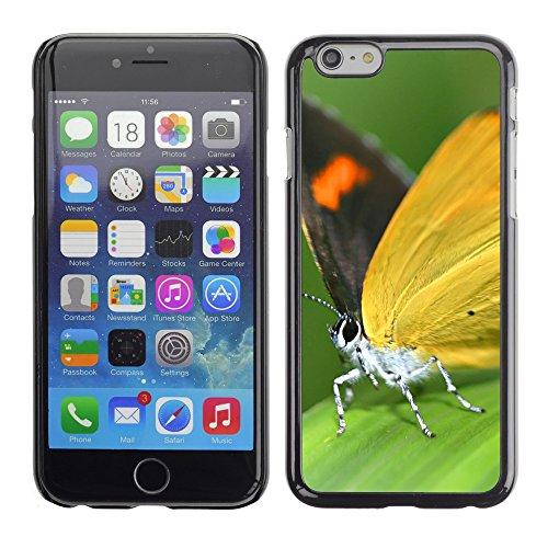 "Premio Sottile Slim Cassa Custodia Case Cover Shell // V00003074 papillon // Apple iPhone 6 6S 6G 4.7"""