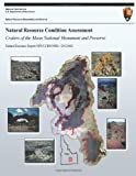 Natural Resource Condition Assessment: Craters of the Moon National Monument and Preserve, John Erixson and Mark Corrao, 1492757586
