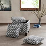 Madison Park FPF18-0489 Shelley Square Storage Ottoman with Pillows