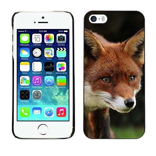 Premio Sottile Slim Cassa Custodia Case Cover Shell // F00012834 Renard // Apple iPhone 5 5S 5G
