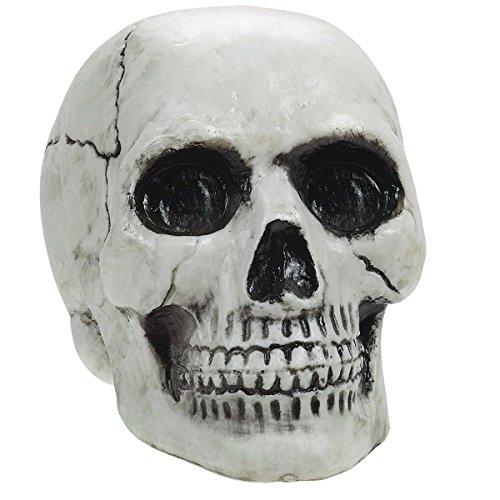 amscan Plastic Skull -