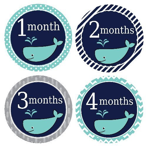 Baby Milestone Stickers - Baby Month Stickers - Age Month Stickers - Navy Blue Whale