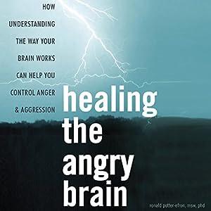 Healing the Angry Brain Audiobook