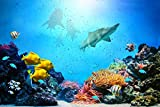 Removable Wall Decals - Huge Vinyl Mural - 3D Stickers - Large Nature Poster 33.5