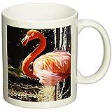 3dRose Flamingo Mug, 11-Ounce