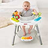 Skip Hop Explore and More Baby's View 3-Stage