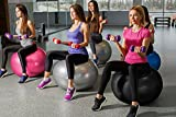 DYNAPRO Exercise Ball - 2,000 lbs Stability Ball