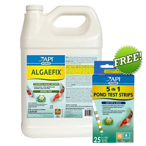 API PondCare AlgaeFix 1 Gallon Pond Algae Control 169C Plus FREE API 5 in 1 Test Strips