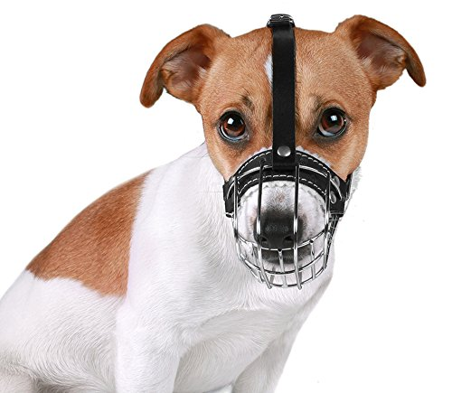 BronzeDog Wire Basket Dog Muzzle Jack Russell Terrier Metal Leather Adjustable Puppy Small (2XS)