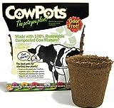 Round Cowpot, 3-inch, 12-Pack