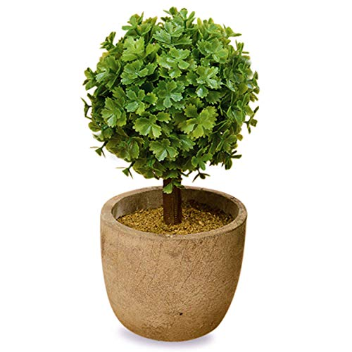 WHW Whole House Worlds Realistic Faux Curly Leaf Boxwood Ball Topiary, Gray Stone Pot, 5 1/2 Inches Tall, Mixed Materials