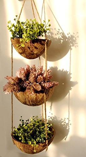 - Exotic Elegance 3 Tier Coconut Shell Hanging Planter Pot.