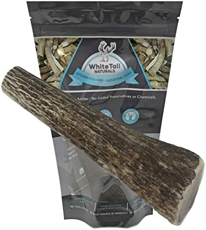 WhiteTail Naturals Premium Whole Antlers product image