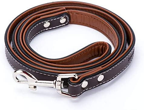 keezeg Leather Leashes Walking Backyard
